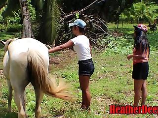 HEATHERDEEP.COM TEEN Girls vs Horse district flannel